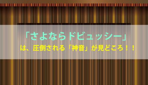 【さよならドビュッシー】ネタバレ感想/動画を【フル・無料】で視聴出来るサービスは?